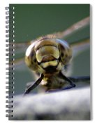 My Friend Vince The Dragonfly Spiral Notebook