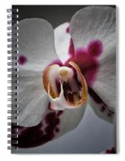 My Growling Dragon Orchid. Spiral Notebook