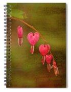 My Heart Bleeds Spiral Notebook