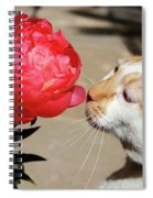My Kitty In Love With A Peony Spiral Notebook