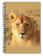 My Lion Eyes Spiral Notebook