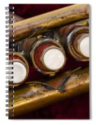 My Musical Past Spiral Notebook