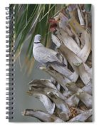 My Own Palm Tree Spiral Notebook