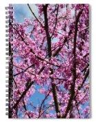 My Redbuds In Bloom Spiral Notebook
