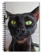 My Silly Sam Spiral Notebook