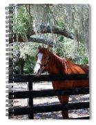 My Southern Friend Spiral Notebook