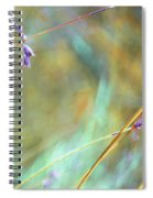 My Summer Painting Spiral Notebook