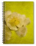 My Sweet Wild Rose Spiral Notebook