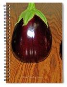 My Three Eggplant Fruits Spiral Notebook