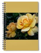 My Yellow Rose Spiral Notebook