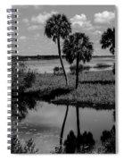 Myakka River Reflections Spiral Notebook