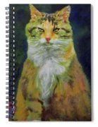 Mysterious Cat Spiral Notebook