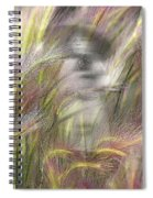 Mysterious Lady Spiral Notebook