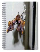 Mysterious Visitor Spiral Notebook