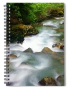 Mystic Creek Spiral Notebook