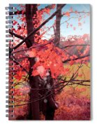 Mystic Day  Spiral Notebook
