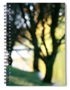 Mystic Fall Spiral Notebook