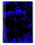 Mystic Owl Spiral Notebook