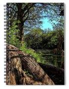 Mystic Pond Spiral Notebook