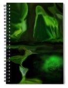 Mystic Wetlands Spiral Notebook