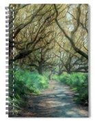 Mystical Angel Oaks  Spiral Notebook