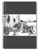 Mystical Riverbed Spiral Notebook