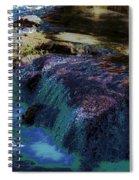Mystical Springs Spiral Notebook