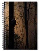 Mystical Woods Spiral Notebook