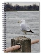 N Y C Water Gull Spiral Notebook