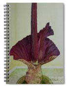 Voodoo Lily 1a Spiral Notebook