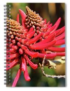 Naked Coral Tree Flower Spiral Notebook