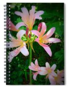 Naked Ladies Really Spiral Notebook