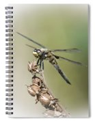 Naked Lunch Spiral Notebook