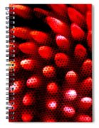 Naked Porcupine Spiral Notebook