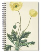 Naked Stalked Poppy Spiral Notebook