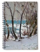 Naked Trees By The Lake Shore Spiral Notebook
