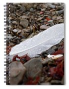 Nameless Feather 1 Spiral Notebook