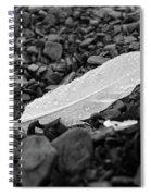 Nameless Feather 2 Spiral Notebook