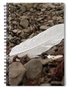 Nameless Feather 3 Spiral Notebook
