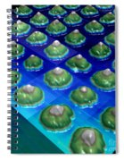 Nanoparticles, Lithium Metal, Afm Spiral Notebook