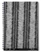 Nanowires, Nanowalls, Sem Spiral Notebook