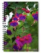 Nan's Fushia Spiral Notebook