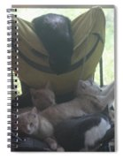 Nap Time For Kitties. Spiral Notebook