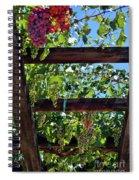 Napa Valley Inglenook Vineyard -2 Spiral Notebook