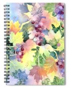 Napa Valley Morning 2 Spiral Notebook