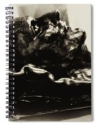 Napoleon's Death Mask Spiral Notebook