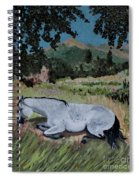 Napping Horse Spiral Notebook