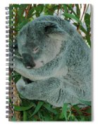 Napping Spiral Notebook