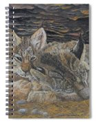 Naptime - Canadian Lynx Spiral Notebook