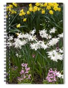 Narcissus And Daffodils In A Spring Flowerbed Spiral Notebook